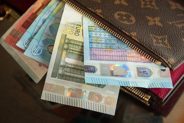 purse & euros