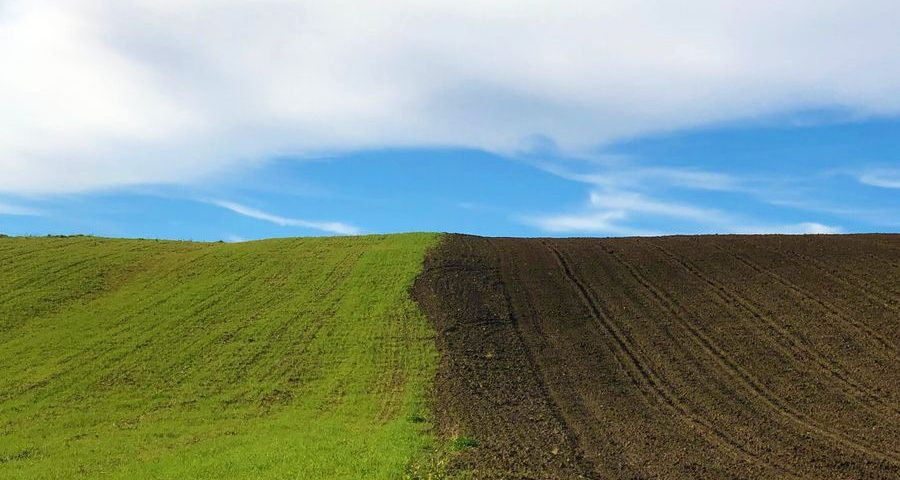the divide between a ploughed, and unploughed field